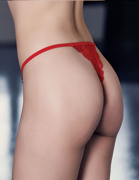 Mel Bee - Mel Bee Lace Brief Red Special Packaged MB3040 (1)